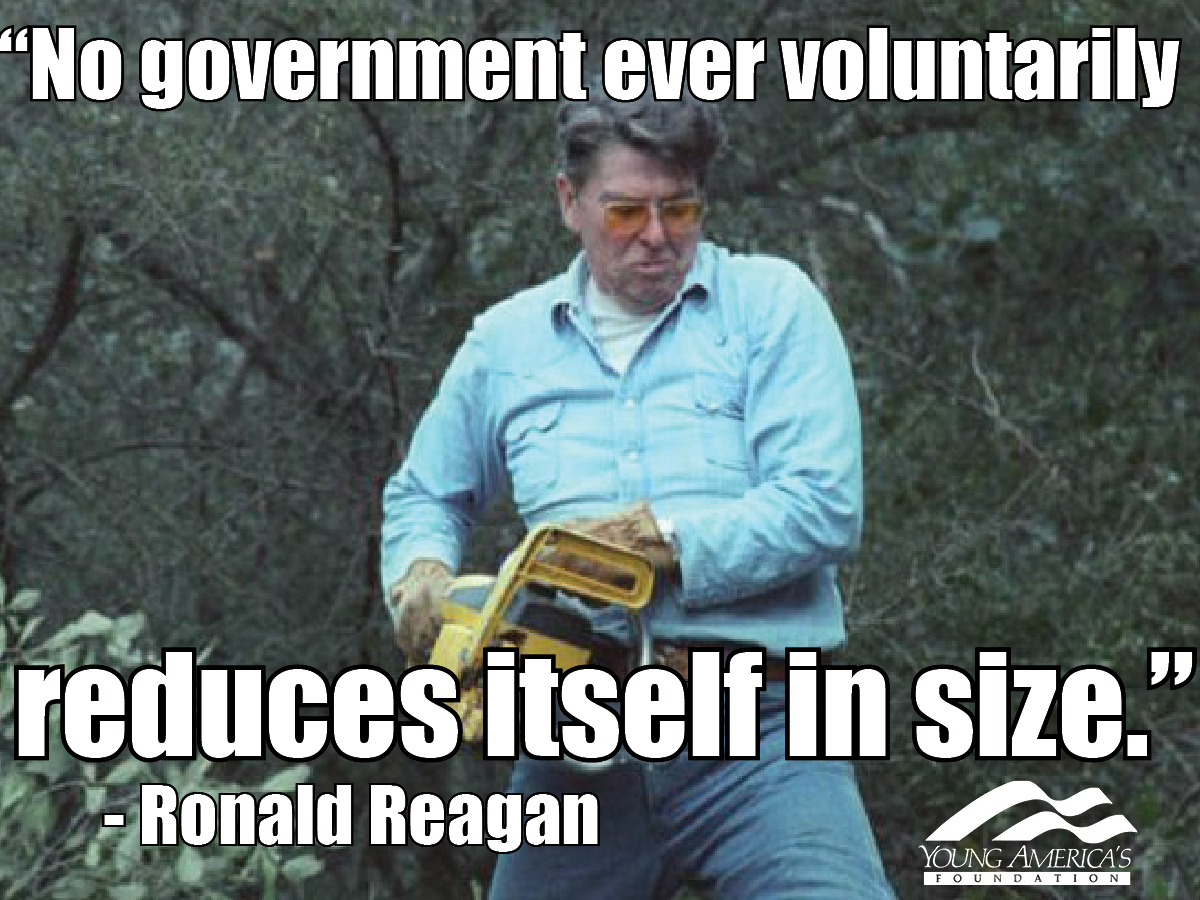 Reagan Meme 3 shock poll 69 percent of young people favor universal tax cuts