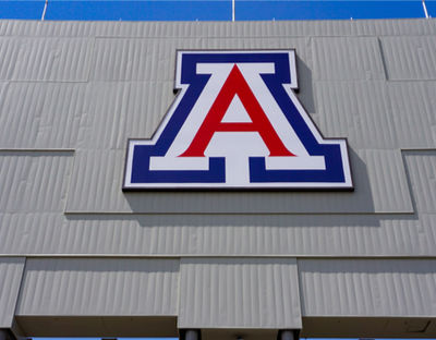 University Of Arizona Students To Learn About Black Lives Matter 'Guiding Principles'